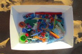 walking the tideline, plastic rubbish, australia