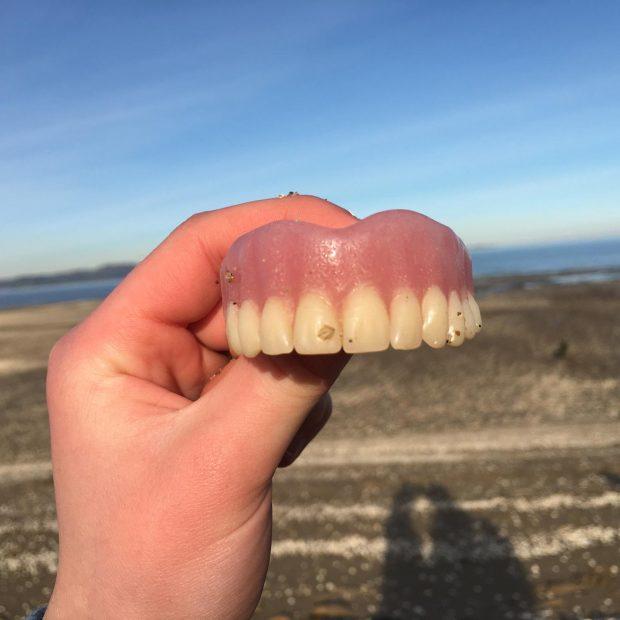 Olivia's funny finds, Dalmeny Beach, East cCoast Scotland