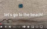 beach find-boat