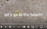 beach find-big fish