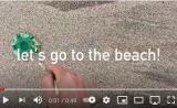 beach find-jellyfish